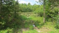 Leland Rd Vacant Lot - 4.64 Acres with well