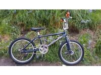 Giant Mosh collectable BMX