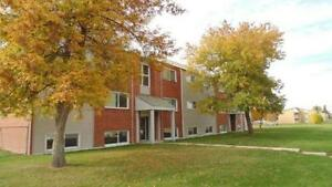 Renovated 1-2 BDRM Apartment in Esterhazy