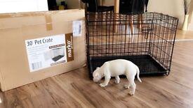 Brand new Medium dog crate