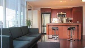 One Bedroom 29th Floor Vancouver Apartment - Spectacular Views!