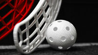 Recreational Floorball is Fun and it's free!