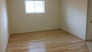 Marlborough renovated bachelor and 1 bedroom suits