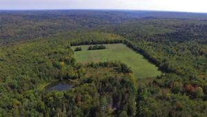 108 Acre hobby Farm Half hour from Fredericton-408 Currieburg Rd