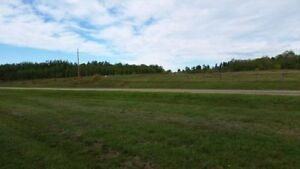2 Building Lots at 2.45 acres each Strathcona County Edmonton Area image 9