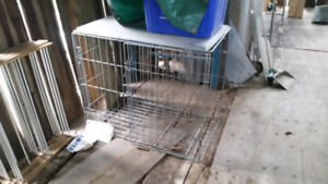 5 Dog Cages