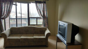 A Female Room mate For Fully Furnished Condo Available November