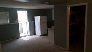 #HUGE entire one bedroom apartment with kitchenette washer dryer