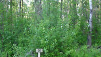 10% off!! OUR BEST lesser slave lake lot (kinuso) rent to own!