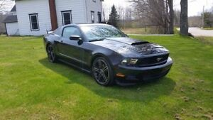 2010 Ford Mustang - Great Shape