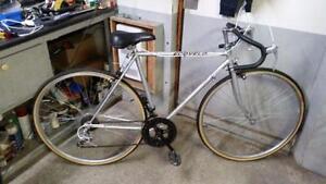 Vélo de course ecovelo gris 10 vitesses roues 27po cadre 21po