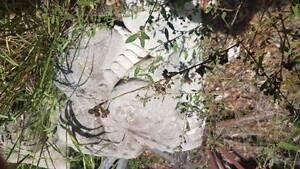 concrete statues x 3 Browns Plains Logan Area Preview