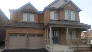 Detached House For Rent