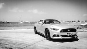 2016 Ford Mustang FM MY17 GT Fastback Silver 6 Speed Manual Fastback Hillman Rockingham Area Preview