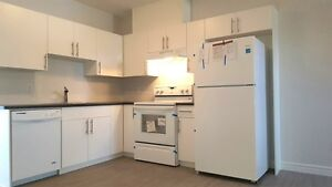 Windermere 2 Bed 1 Bath New Bright Affordable Bsmt Suite - Apr 1