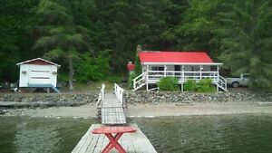 Adams lake cabin/cottage for rent!