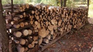 Cordes de bois