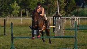 ISO - Next jumping partner