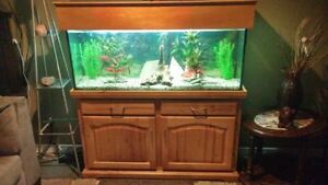 55 gal fish tank with oak stand!