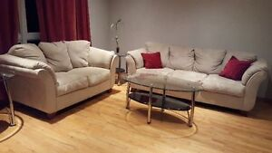 Super Comfy Couch and Loveseat - Treated with Fabric Protection