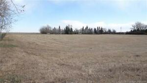 3 Lots for Sale in Stirling