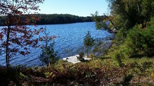 4 acres lot on Lake Waseosa 10 min from Huntsville in Muskoka