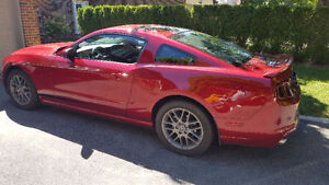 2014 Ford Mustang Coupe (2 door) **Never driven in winter**