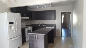 Privacy, Space and Close to Amenities-The Perfect 3BR Home