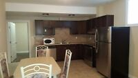 Brand New Furnished Basement Suit with 2 Bedrms & 2 Full Wshrm