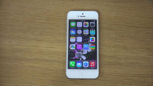 iPhone 5 16gb White Clean With No Problems