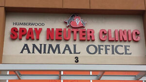 SPAY & NEUTER : DOGS & CATS : VETERINARIAN IN GTA