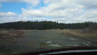 Nice Flat piece of Land on Salmonier line