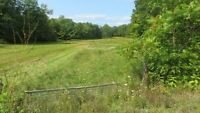 North Shore Rd - 4.5 Acre with well