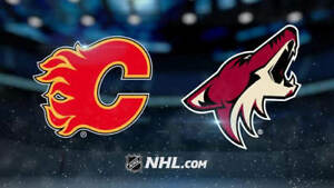 Flames vs. Coyotes, Feb 18, Family Day, Lower Bowl, Below FV