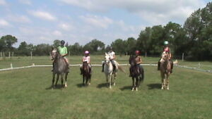 Summer Horse and pony camp day and overnight