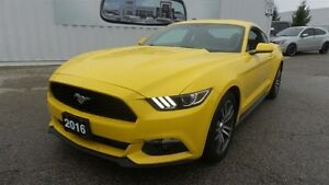 2016 Ford Mustang EcoBoost over 300hp