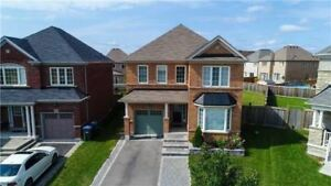W4278310  -Come & Check Out This Fully Detached House