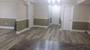 BIG Beautiful 1 Bedroom +Den basement apartment for rent!!!!!!!!