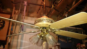 Ceiling Fan and Lighting with 3 feet extension pole