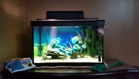 Complete 15 Gallon Fish Tank / Aquarium