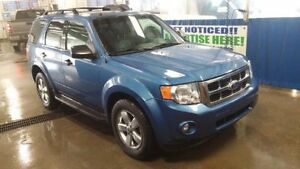 2010 Ford Escape XLT V6 AWD Flex Fuel Fully Loaded