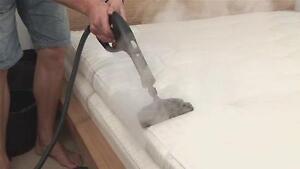 steam carpet cleaning starting from $60 Edmonton Edmonton Area image 8