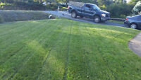Lawn mowing and Fall clean-ups **Free quotes**