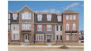 Freehold Townhouse for Sale $685,000 (Brampton) 159