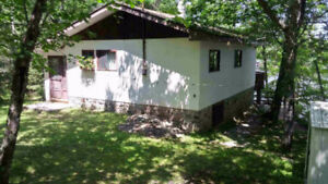 Cottage For Rent In North Kawartha