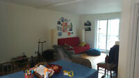 July or August 1 -  Coloc Rechercher/ Roomate wanted