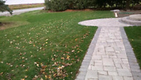 Professional Sod Installations by Stone Foundations