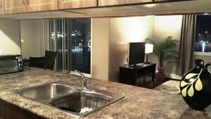 Completely Furnished 2 bedroom, 2 Bathroom Condo Strathcona County Edmonton Area image 3