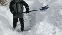 Wanted - Snow Shoveler for downtown Charlottetown
