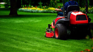 Lawn mowing / care services